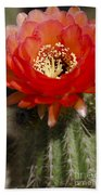 Red Cactus Flower Bath Towel