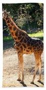 Baringo Giraffe  Bath Towel