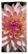Dahlia Named Valley Porcupine Bath Towel