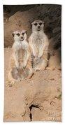Meerkat Hand Towel