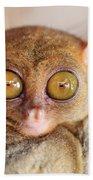 Phillipine Tarsier Bath Towel