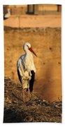 Storks In Marrakech Bath Towel
