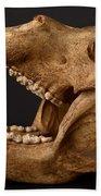 Kodiak Bear Skull Bath Towel
