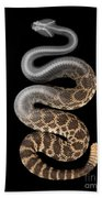 Southern Pacific Rattlesnake X-ray Bath Towel
