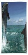 Bottlenose Dolphin Tursiops Truncatus Hand Towel