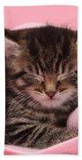 Tabby Kitten Bath Towel