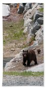 Black Bear Family Bath Towel