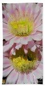Pink Cactus Flowers Bath Towel