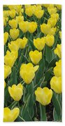 A Field Of Yellow Tulips In Spring Bath Towel