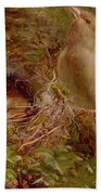A Greenfinch At Its Nest Bath Towel