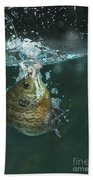 A Hooked Bluegill Bath Towel