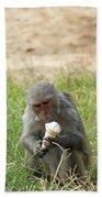 A Monkey Enjoying An Ice Cream Cone Inside Delhi Zoo Bath Towel