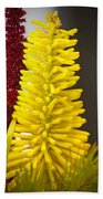 A Pair Of Yellow And Red Bath Towel