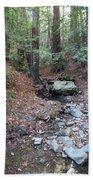A Peaceful Redwood Creek On Mt Tamalpais Bath Towel