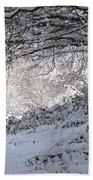 A Walk In The Snow Bath Towel