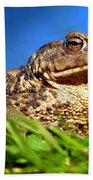 A Worm's Eye View Bath Towel