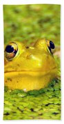 A Yellow Bullfrog Bath Towel
