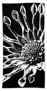 African Daisy In Black And White Bath Towel