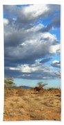 African Elephant Bath Towel