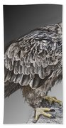 African Tawny Eagle Bath Towel