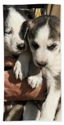 Alaskan Huskey Puppies Hand Towel