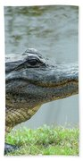 Alligator Cameron Prairie Nwr La Bath Towel