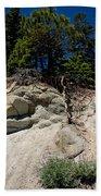 Alpine Pine Hangs On For Life Bath Towel