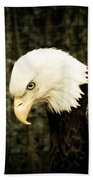 American Eagle Bath Towel