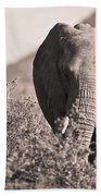 An Elephant Walking In The Bush Samburu Bath Towel