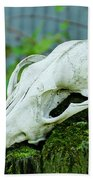 Animal Skull Bath Towel