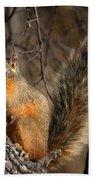 Apache Fox Squirrel Bath Towel