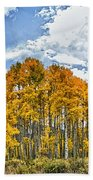 Apen Trees In Fall Bath Towel