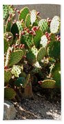 Arizona Prickly Pear Cactus Bath Towel