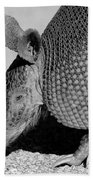 Armadillo Bath Towel