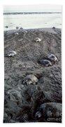 Arribada Of Olive Ridley Turtles, Costa Bath Towel