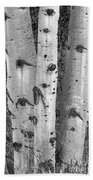 Aspen Trees Bath Towel