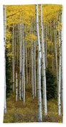 Aspen Trunks Bath Towel