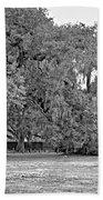 Audubon Park 2 Monochrome Bath Towel