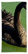 Australian Black Swan Bath Towel