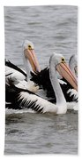 Australian Pelicans Bath Towel