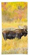 Autumn Bull Limited Edition Bath Towel