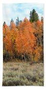 Autumn Colors Bath Towel