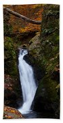 Autumn Falls Bath Towel