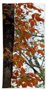 Autumn Glory At Tannehill Bath Towel