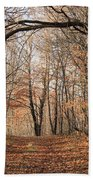 Autumn In The Woods Bath Towel