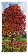 Autumn Maple Emphasized Bath Towel