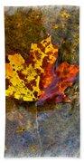 Autumn Maple Leaf In Water Bath Towel