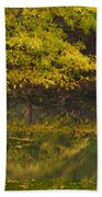Autumn Reflections_0138 Bath Towel