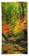 Autumn Reflects Bath Towel