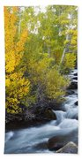 Autumn Stream V Bath Towel